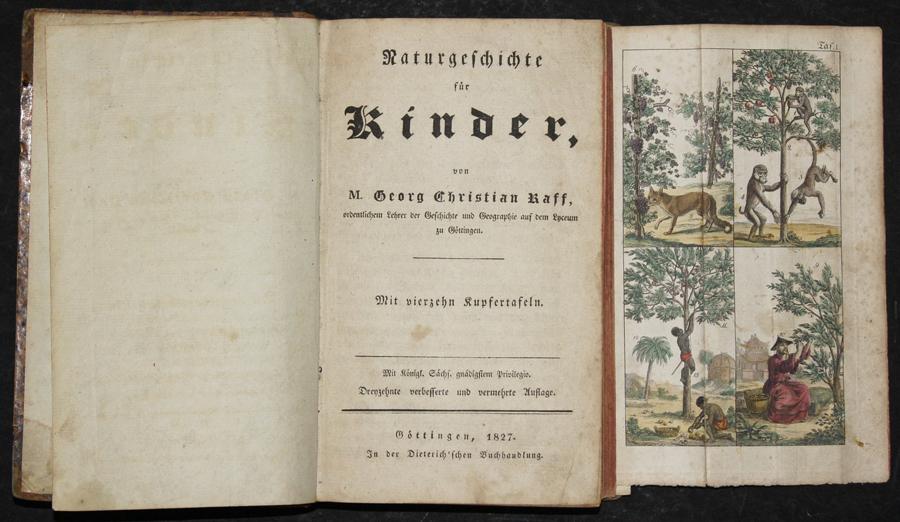 Naturgeschichte für Kinder, von M. Georg Christian Raff,…